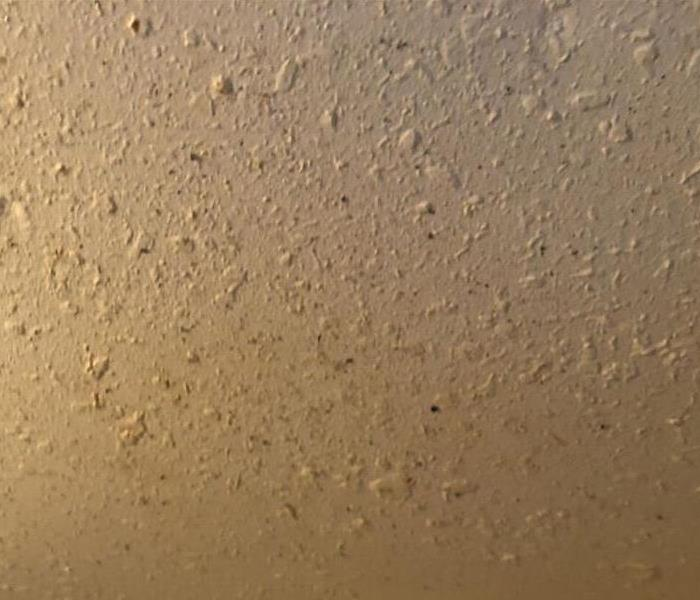 Mold Damage To Ceiling  Before