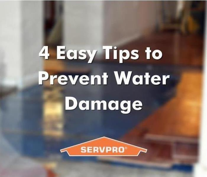 water damage in Saint Petersburg, Florida - water damage