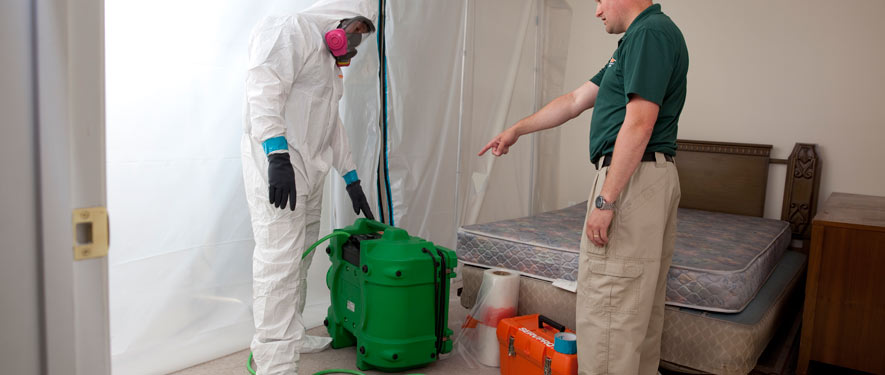 St. Petersburg, FL mold removal process